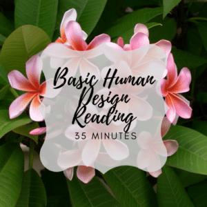 Basic human design reading